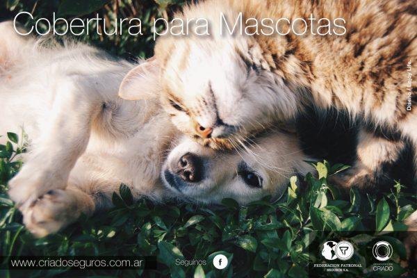 cobertura mascotas
